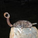 turtle 3
